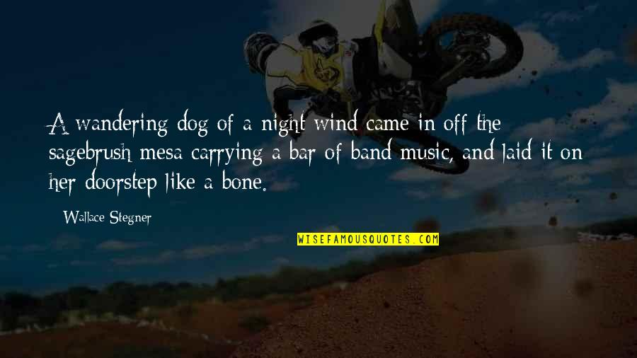 Angels Here On Earth Quotes By Wallace Stegner: A wandering dog of a night wind came