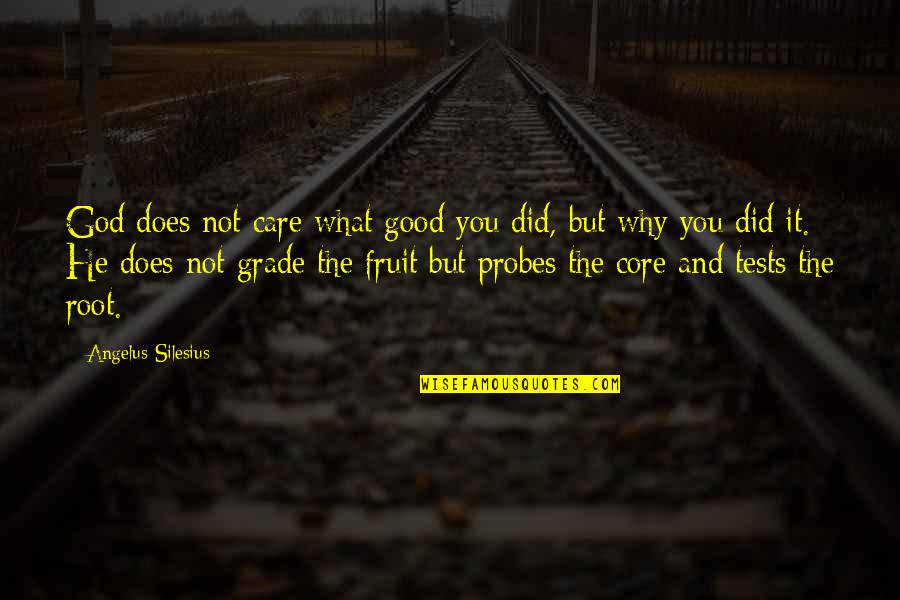 Angelus Quotes By Angelus Silesius: God does not care what good you did,