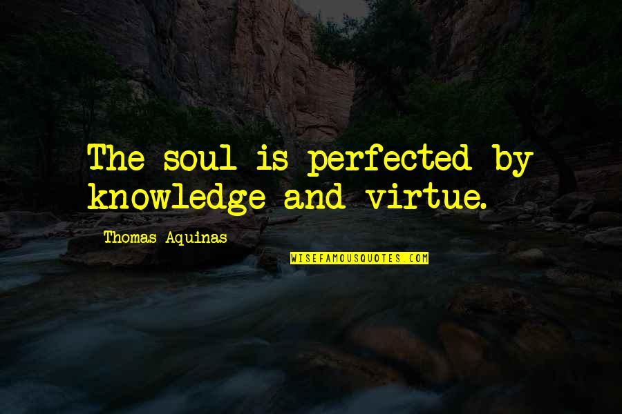 Angre Quotes By Thomas Aquinas: The soul is perfected by knowledge and virtue.