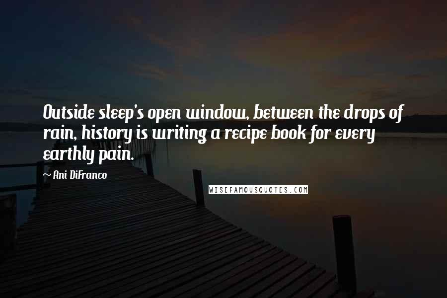 Ani DiFranco quotes: Outside sleep's open window, between the drops of rain, history is writing a recipe book for every earthly pain.