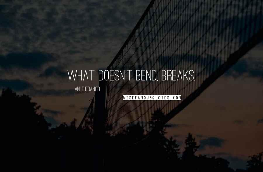 Ani DiFranco quotes: What doesn't bend, breaks.