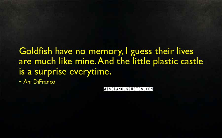 Ani DiFranco quotes: Goldfish have no memory, I guess their lives are much like mine. And the little plastic castle is a surprise everytime.