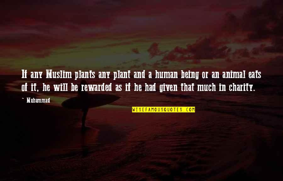 Animal Charity Quotes By Muhammad: If any Muslim plants any plant and a