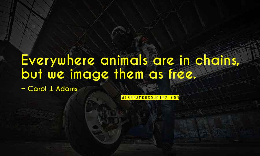 Animal Quotes By Carol J. Adams: Everywhere animals are in chains, but we image