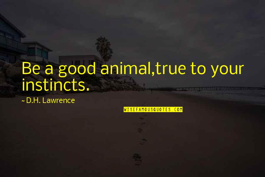 Animal Quotes By D.H. Lawrence: Be a good animal,true to your instincts.