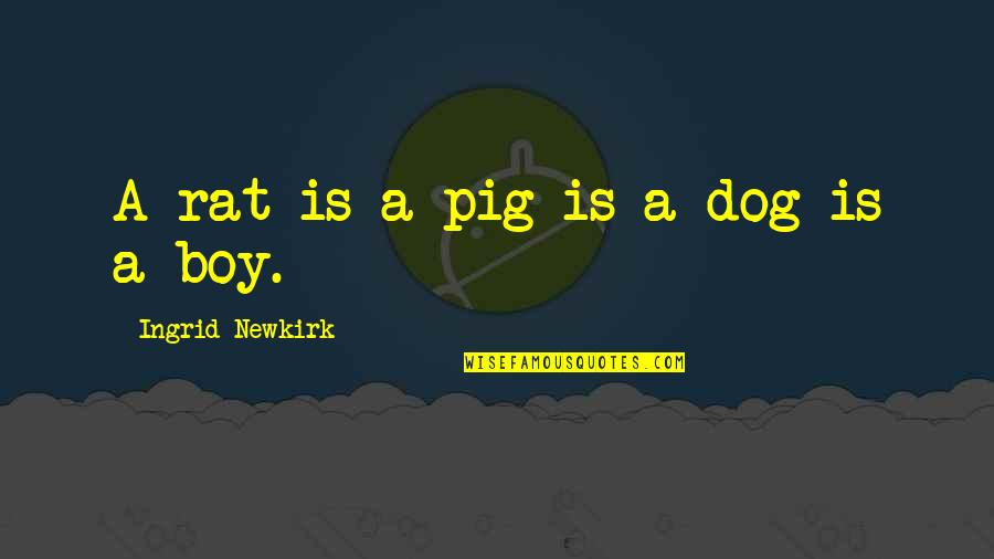 Animal Quotes By Ingrid Newkirk: A rat is a pig is a dog
