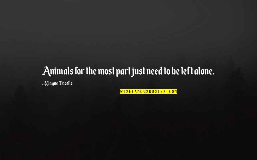 Animal Quotes By Wayne Pacelle: Animals for the most part just need to