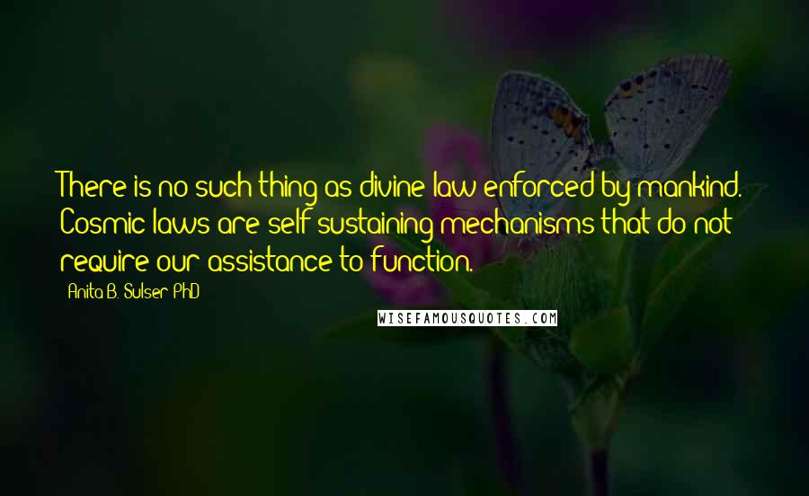 Anita B. Sulser PhD quotes: There is no such thing as divine law enforced by mankind. Cosmic laws are self-sustaining mechanisms that do not require our assistance to function.
