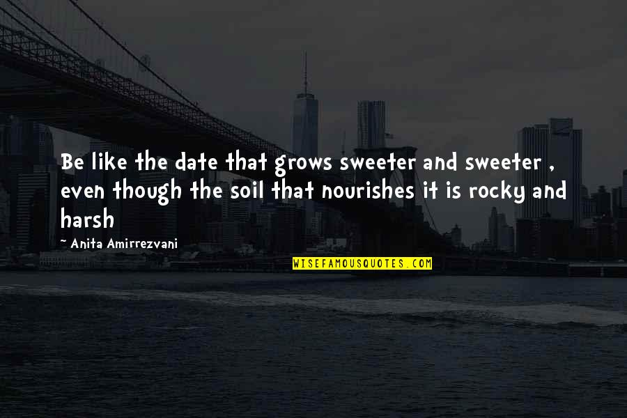 Anita Quotes By Anita Amirrezvani: Be like the date that grows sweeter and