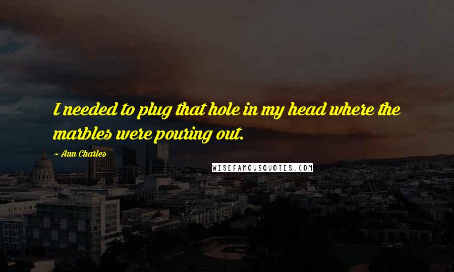 Ann Charles quotes: I needed to plug that hole in my head where the marbles were pouring out.