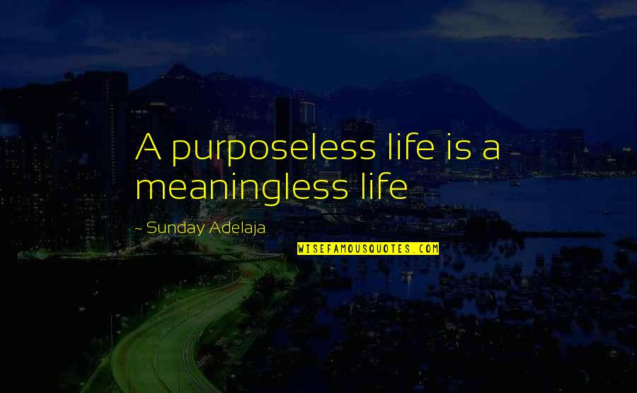 Anna Mae Hays Quotes By Sunday Adelaja: A purposeless life is a meaningless life