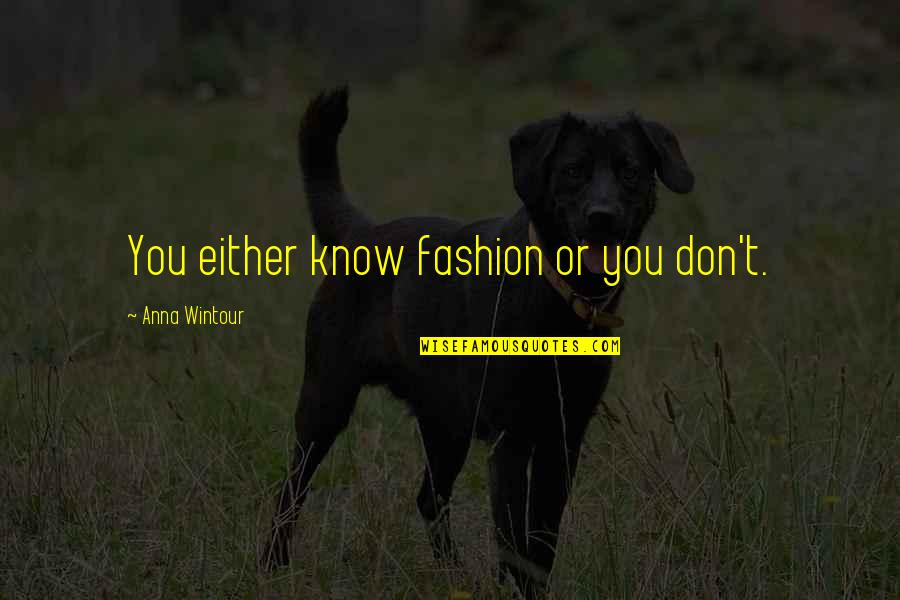 Anna Wintour Quotes By Anna Wintour: You either know fashion or you don't.