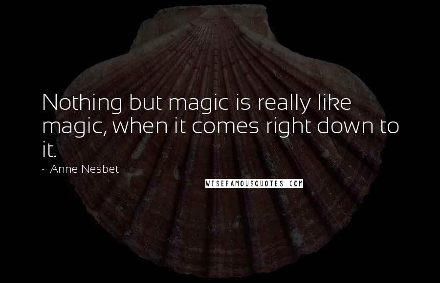 Anne Nesbet quotes: Nothing but magic is really like magic, when it comes right down to it.