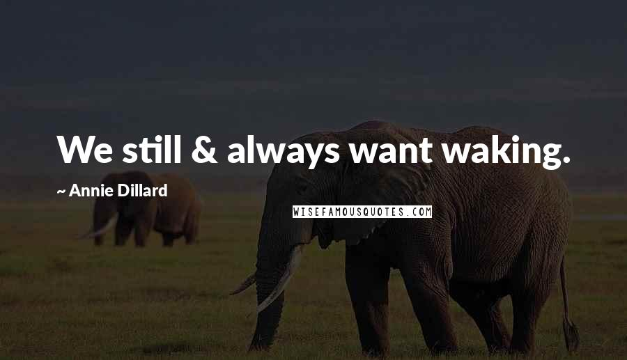 Annie Dillard quotes: We still & always want waking.
