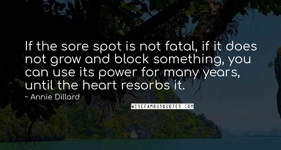 Annie Dillard quotes: If the sore spot is not fatal, if it does not grow and block something, you can use its power for many years, until the heart resorbs it.