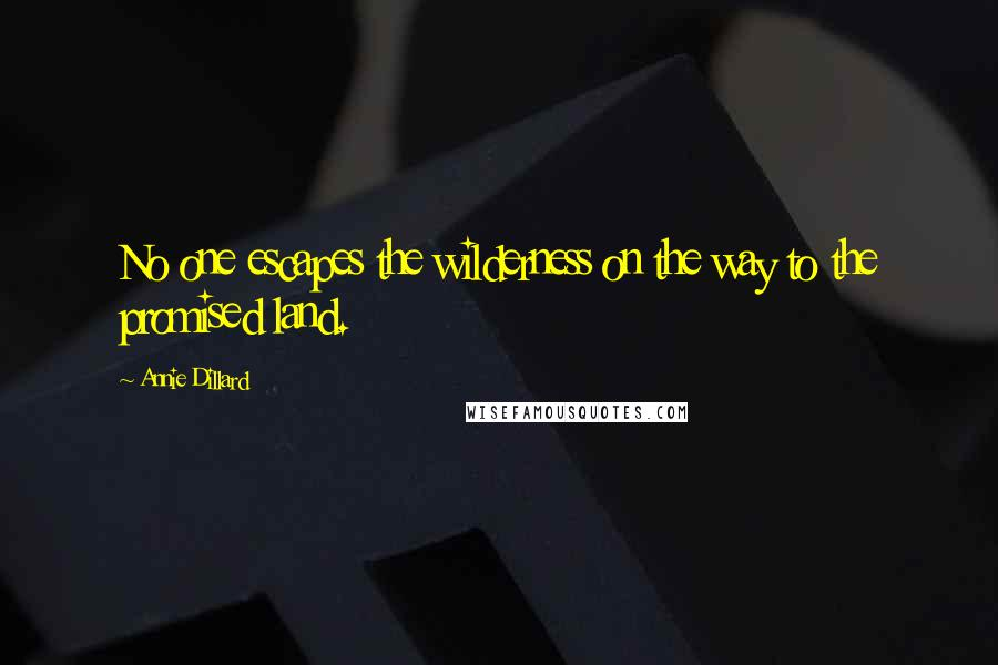 Annie Dillard quotes: No one escapes the wilderness on the way to the promised land.