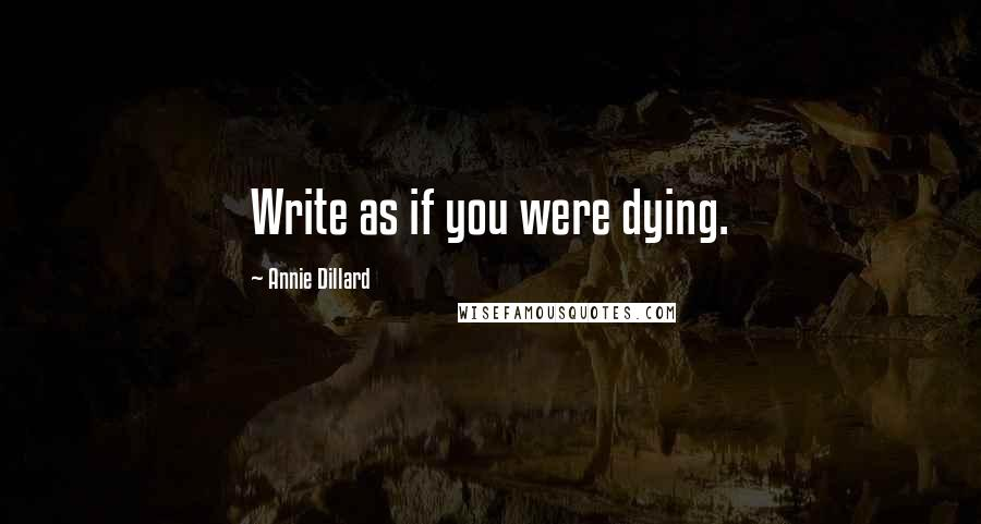 Annie Dillard quotes: Write as if you were dying.