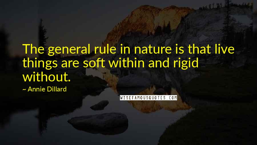 Annie Dillard quotes: The general rule in nature is that live things are soft within and rigid without.