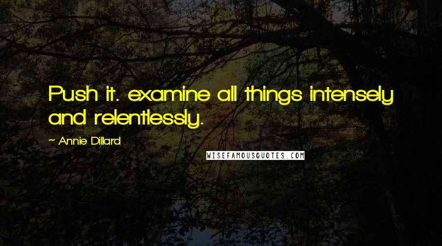 Annie Dillard quotes: Push it. examine all things intensely and relentlessly.
