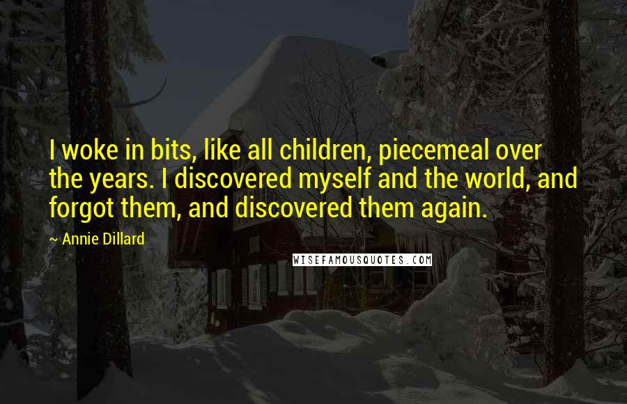 Annie Dillard quotes: I woke in bits, like all children, piecemeal over the years. I discovered myself and the world, and forgot them, and discovered them again.