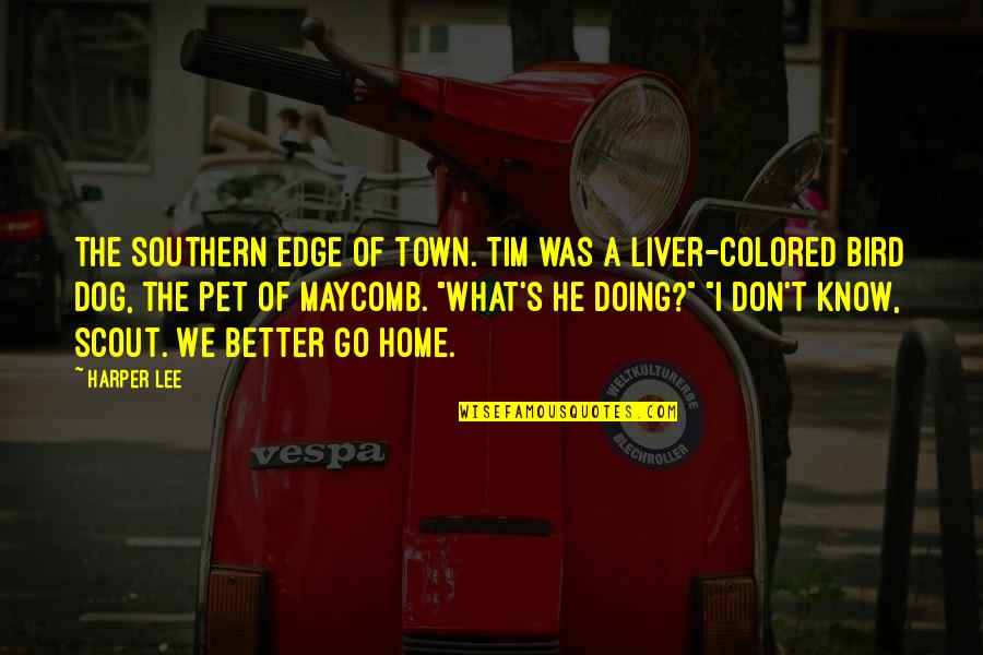 Anri Bergson Quotes By Harper Lee: The southern edge of town. Tim was a