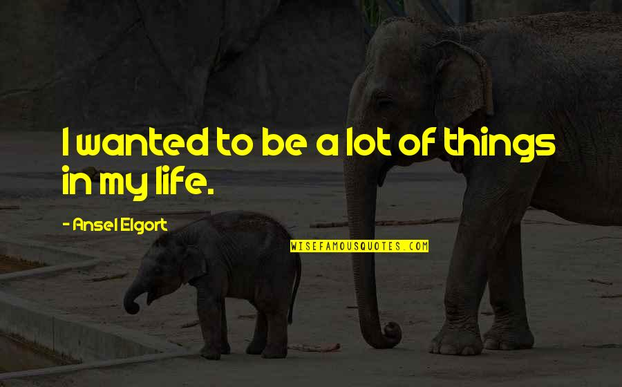Ansel Elgort Quotes By Ansel Elgort: I wanted to be a lot of things
