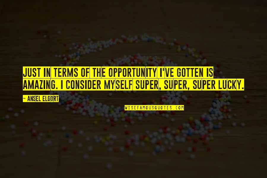 Ansel Elgort Quotes By Ansel Elgort: Just in terms of the opportunity I've gotten