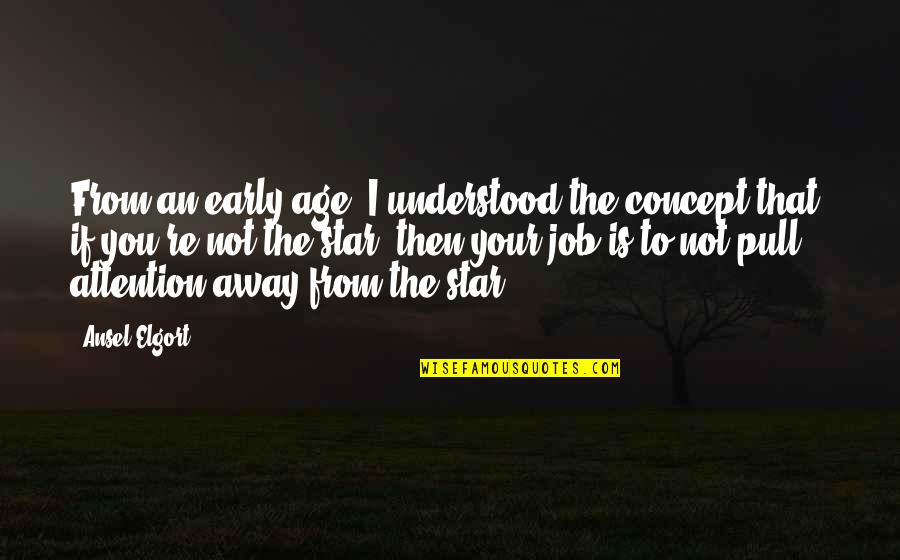 Ansel Elgort Quotes By Ansel Elgort: From an early age, I understood the concept