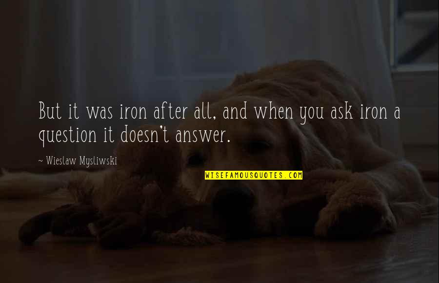 Answer And Question Quotes By Wieslaw Mysliwski: But it was iron after all, and when