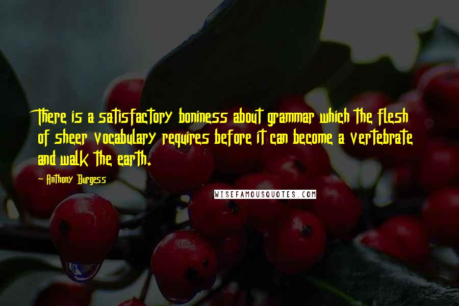 Anthony Burgess quotes: There is a satisfactory boniness about grammar which the flesh of sheer vocabulary requires before it can become a vertebrate and walk the earth.