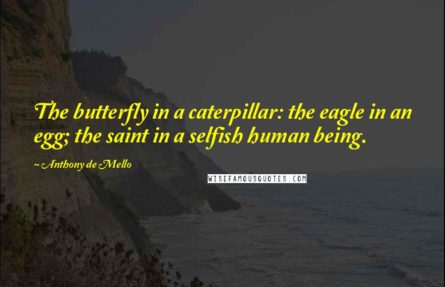 Anthony De Mello quotes: The butterfly in a caterpillar: the eagle in an egg; the saint in a selfish human being.