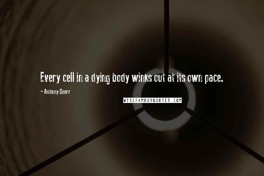 Anthony Doerr quotes: Every cell in a dying body winks out at its own pace.