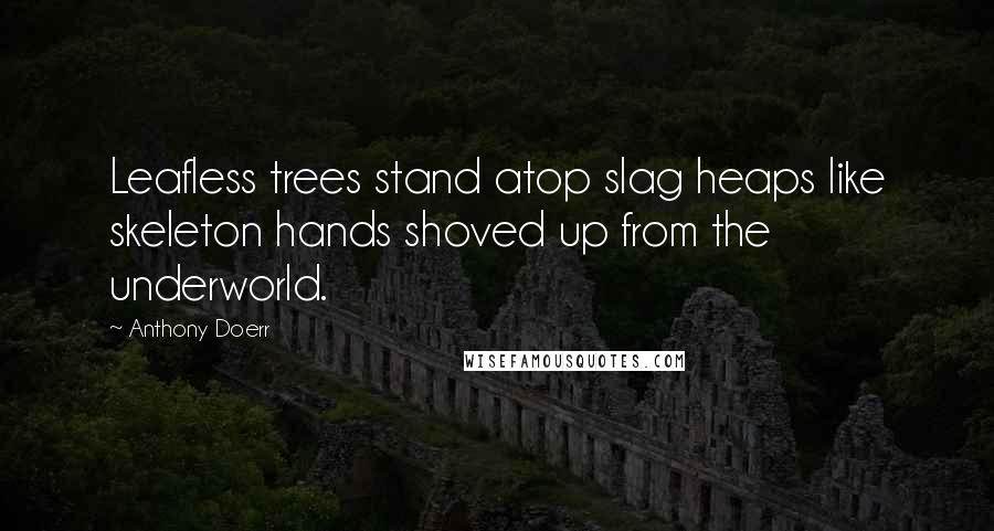 Anthony Doerr quotes: Leafless trees stand atop slag heaps like skeleton hands shoved up from the underworld.