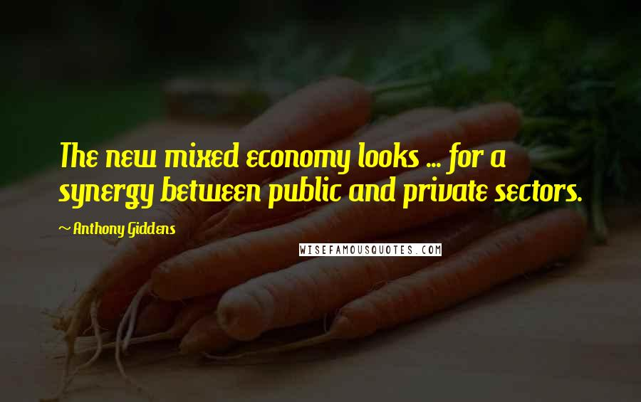 Anthony Giddens quotes: The new mixed economy looks ... for a synergy between public and private sectors.