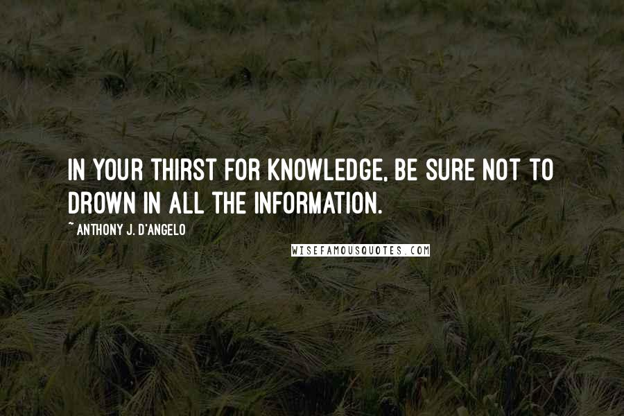 Anthony J. D'Angelo quotes: In your thirst for knowledge, be sure not to drown in all the information.