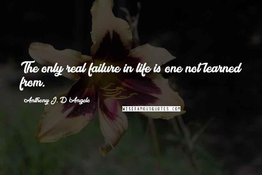 Anthony J. D'Angelo quotes: The only real failure in life is one not learned from.
