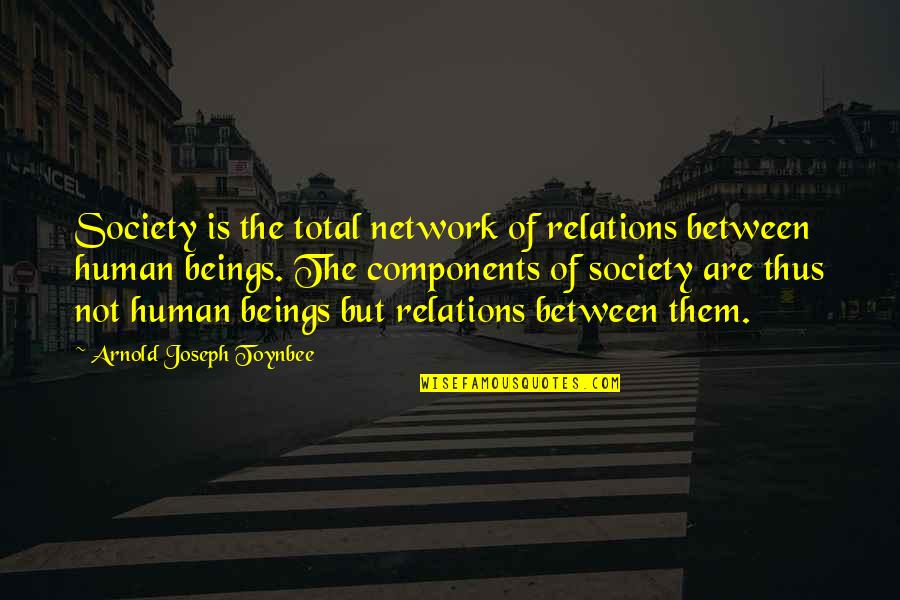 Anti Gambling Quotes By Arnold Joseph Toynbee: Society is the total network of relations between