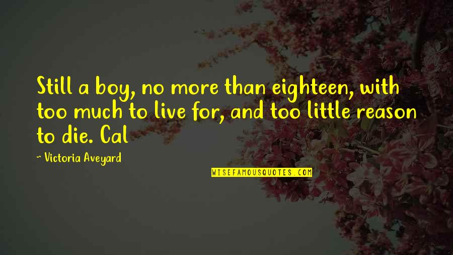 Anti Labor Union Quotes By Victoria Aveyard: Still a boy, no more than eighteen, with