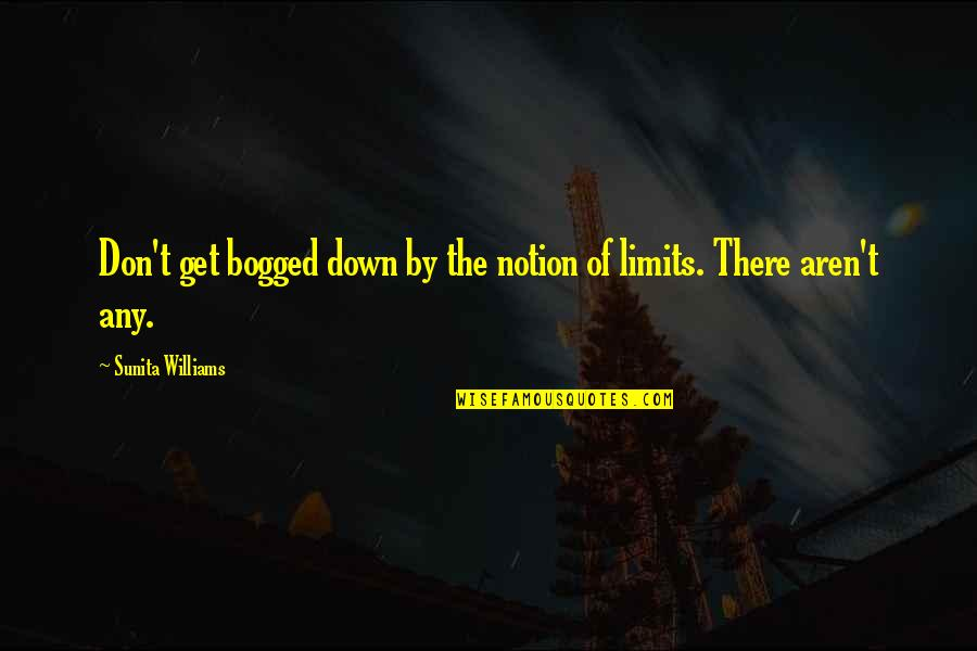 Antlike Quotes By Sunita Williams: Don't get bogged down by the notion of