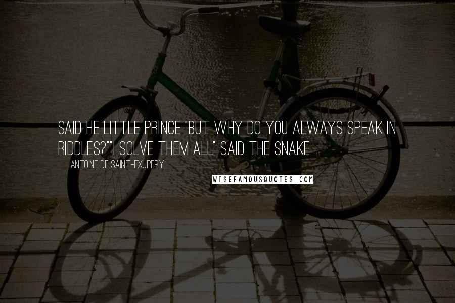 """Antoine De Saint-Exupery quotes: Said he little prince """"But why do you always speak in riddles?""""""""I solve them all"""" said the snake"""
