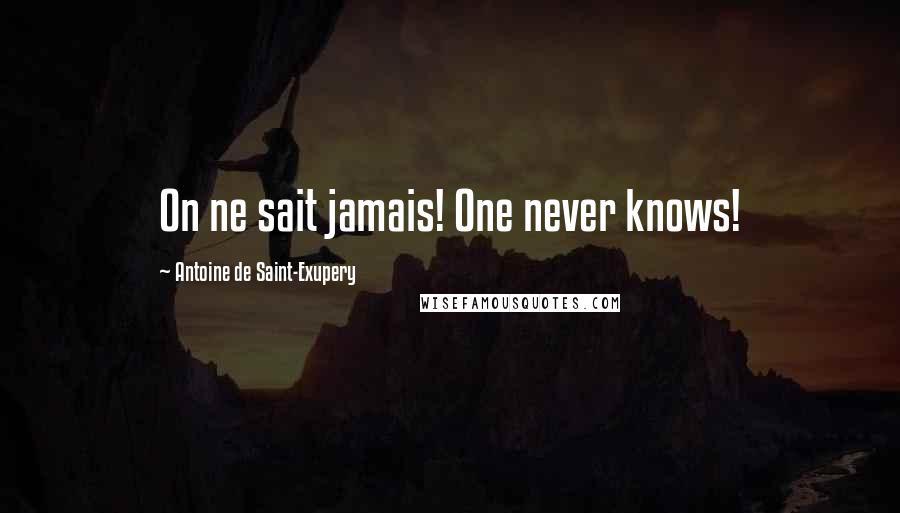 Antoine De Saint-Exupery quotes: On ne sait jamais! One never knows!