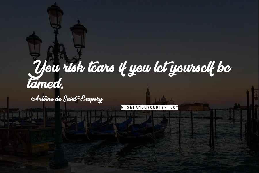 Antoine De Saint-Exupery quotes: You risk tears if you let yourself be tamed.