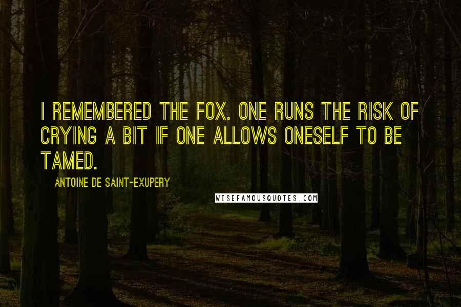 Antoine De Saint-Exupery quotes: I remembered the fox. One runs the risk of crying a bit if one allows oneself to be tamed.