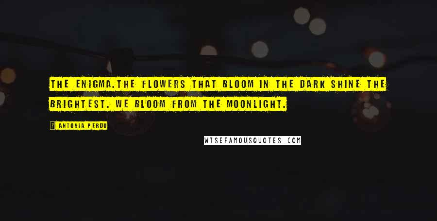 Antonia Perdu quotes: The enigma.The flowers that bloom in the dark shine the brightest. We bloom from the moonlight.