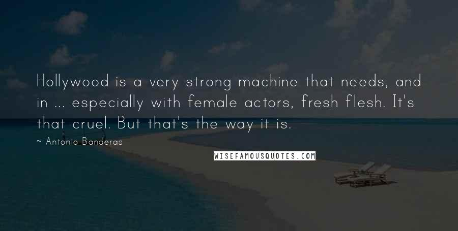Antonio Banderas quotes: Hollywood is a very strong machine that needs, and in ... especially with female actors, fresh flesh. It's that cruel. But that's the way it is.