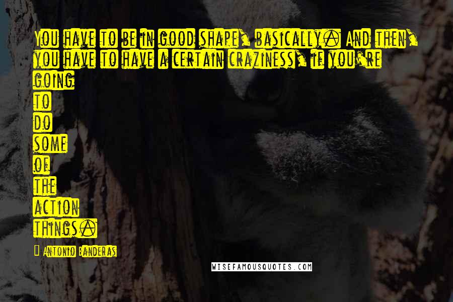Antonio Banderas quotes: You have to be in good shape, basically. And then, you have to have a certain craziness, if you're going to do some of the action things.