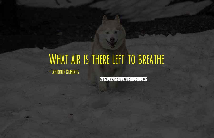 Antonio Cisneros quotes: What air is there left to breathe