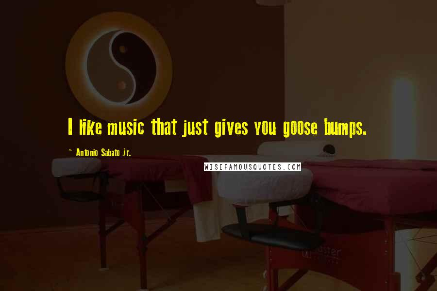 Antonio Sabato Jr. quotes: I like music that just gives you goose bumps.