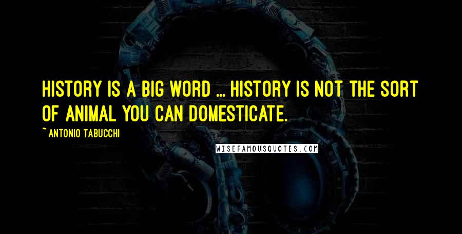 Antonio Tabucchi quotes: History is a big word ... History is not the sort of animal you can domesticate.