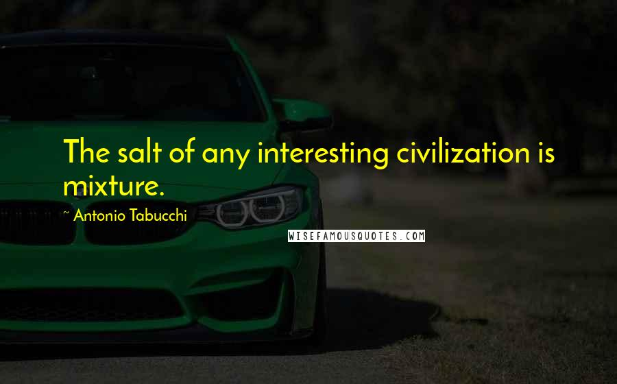 Antonio Tabucchi quotes: The salt of any interesting civilization is mixture.